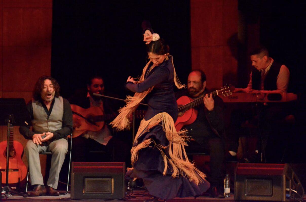 Flamenco en Nou Racó